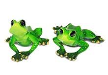 Kolekcja zielonych, ceramicznych, pięknie wykonanychfigurek żab. Różne rozmiary i kształtyżabek oraz ich atrybutydają szeroki wybór....
