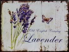 Obrazek z Lawendą