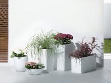 Ta przepiękna, ręcznie wykonana doniczka z włókna szklanego charakteryzuje się dużą funkcjonalnością - świetnie sprawdza się zarówno w...