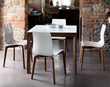 Stół WEB wyprodukowany przez Domitalia.<br />Stół jest prostokątny, rozkładany.<br />Rama wykonana z drewna bądź lakierowanej...