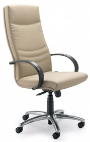 Alfa AF001 to fotel gabinetowy. Wyposażone w wysokie oparcie oraz czarne, nylonowe podłokietniki Podstawa to krzyżak z czarnego nylonu, posiadająca system...