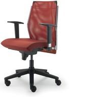 STEEL ST02 jest fotelem pracowniczym. Wyposażony jest w niskie, siatkowane oparcie.<br />Fotel posiada podłokietniki stworzone z chromowanego metalu...