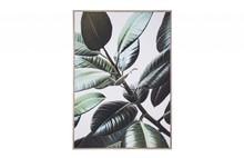 Obraz BOLD - roślina
