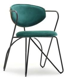 Krzesło na giętych nogach TALISA - zielony/orzech